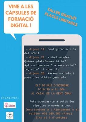 Càpsules de formació digital: Xarxes socials