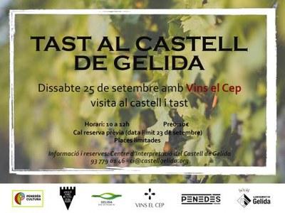 Visita guiada al castell amb Tast - AACG