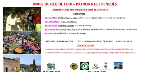 Aplec de Foix