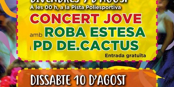 Concert Jove amb ROBA ESTESA i PD DE.CACTUS