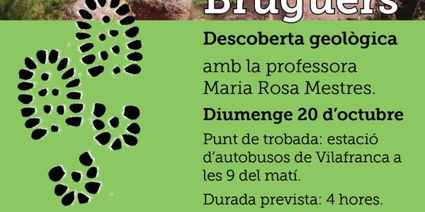 Descoberta geològica a Bruguers