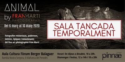 Exposició - ANIMAL by Fran Martí / SALA TANCADA TEMPORALMENT